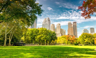 Poster Beautiful foliage colors of New York Central Park