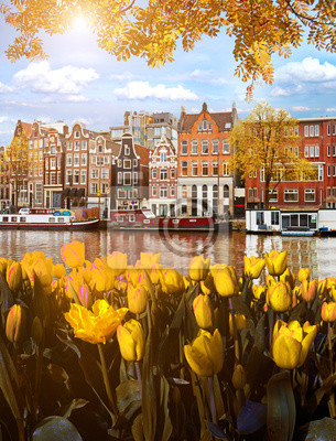 Beautiful Magic Autumn Landscape in Amsterdam, Holland with tulips. amazing places. popular tourist atraction