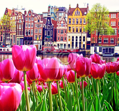 Beautiful magic spring landscape with tulips  and old Dutch buildings  in Amsterdam, Holland. amazing places. popular tourist atraction