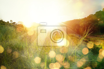 Poster Beautiful sunrise in the mountain..Meadow landscape refreshment with sunray and golden bokeh.