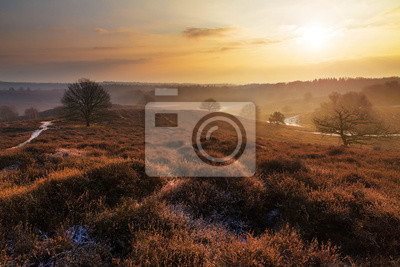 Beautiful winter sunrise landscape at national park the Posbank in the Netherlands