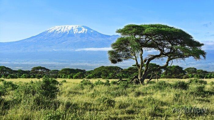 Poster Berg Kilimanjaro in Kenia