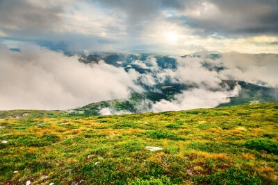 Poster Berglandschaft im Sommer