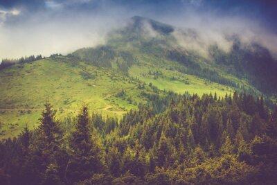 Poster Berglandschaft und Wälder Tops mit Nebel bedeckt. Dramatische bewölkter Himmel.