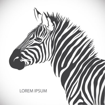 Poster Beschriften mit dem Kopf eines Zebras. Vector.