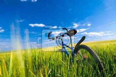 Bike auf dem Feld