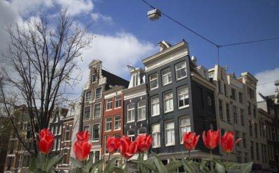 Bild von Amsterdam mit roten Tulpen