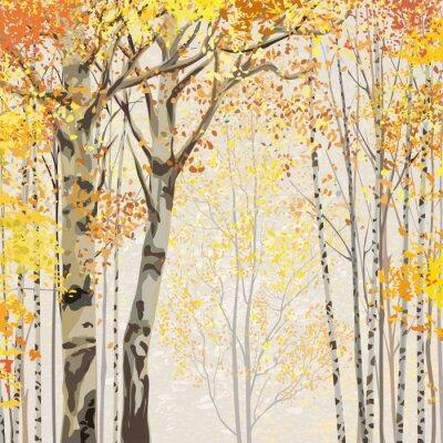 Poster Birkenhain im Herbst Zeit