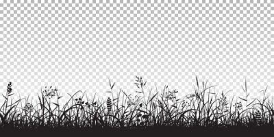 Poster Black silhouettes of grass
