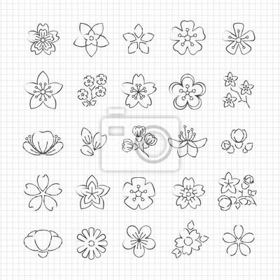 Poster Bleistiftzeichnung Blüte Blumen