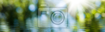 Poster blurred image of natural background from water and plants