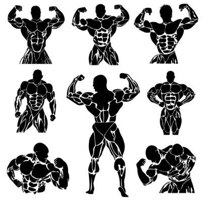 Poster Bodybuilding, Kraftdreikampf, vector, set