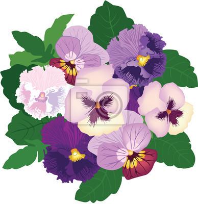 Bouquet aus weißen, violett und lila Stiefmütterchen