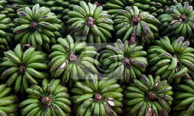 Bunches of bananas. Uganda.