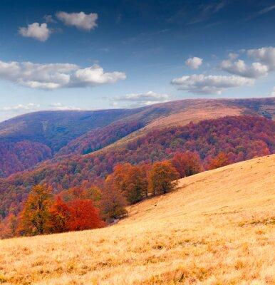 Bunte Herbstlandschaft in den Bergen