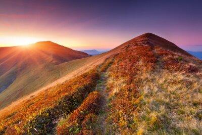 Bunte Herbstlandschaft in den Bergen. Sonnenaufgang