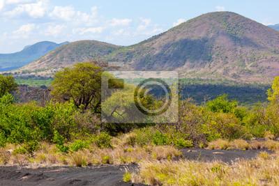 Bush und Savannenlandschaft in Afrika Tsavo West, Kenia, Afrika