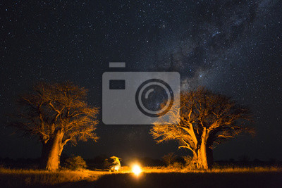 Camping under the milky way between baobab's