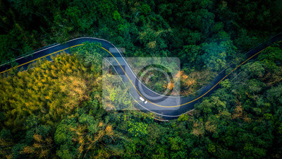 Poster Car in rural road in deep rain forest with green tree forest, Aerial view car in the forest.