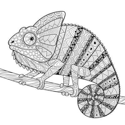 Poster Chamäleon. Erwachsene Antistress Färbung Seite. Schwarz-Weiß-Hand gezeichnet doodle für Malbuch