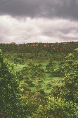 Cloudy day inside the Serra da Canastra Naitonal Park in Minas Gerais, Brazil