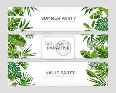 Poster Collection of horizontal web banner templates with green tropical foliage of exotic jungle plants and trees and place for text on white background. Colorful natural realistic vector illustration.