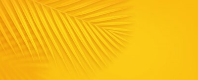Poster Colorful summer background with copy space. Bright yellow 3d illustration of tropical palm branch.