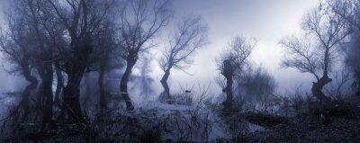 Poster Creepy Landschaft mit nebligen dunklen Sumpf im Herbst.