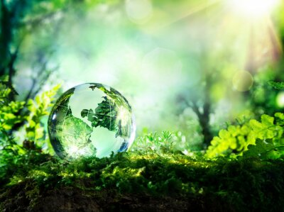 Poster crystal globe on moss in a forest - environment concept
