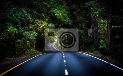 Poster Das Leben ist eine kurvenreiche Straße