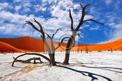 Poster Deadvlei, Sossusvlei. Namibia