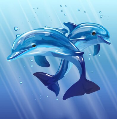 Poster Delfine