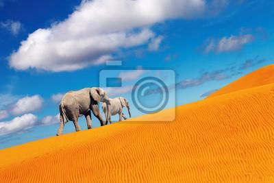Poster Desert fantasy, Elefanten zu Fuß