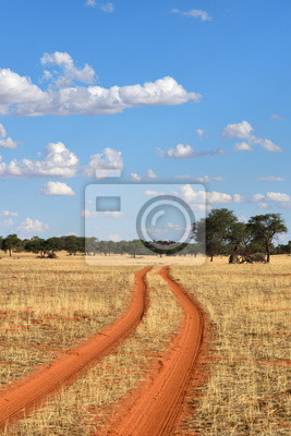 Die Kalahari-Wüste, Namibia