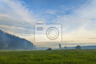Die Menschen in Nebel auf verträumten grünen Wiese