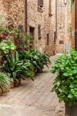 Poster Die Straßen der alten italienischen Stadt Pienza, Toskana