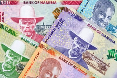 Poster Dollars from Namibia a business background