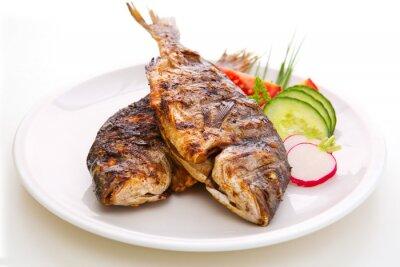 Poster Dorada fish.