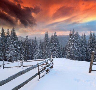 Dramatische Winterlandschaft in den Bergen. Bunte Sonnenaufgang