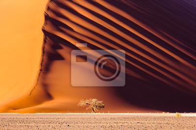 Poster Dune 45, a massive red sand dune in the Namib Desert, Sossusvlei, Namibia