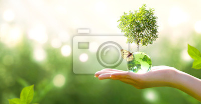 Poster Earth crystal glass globe ball and growing tree in human hand, flying butterfly on green background. Saving environment, save clean planet, ecology concept. Card for World Earth Day.