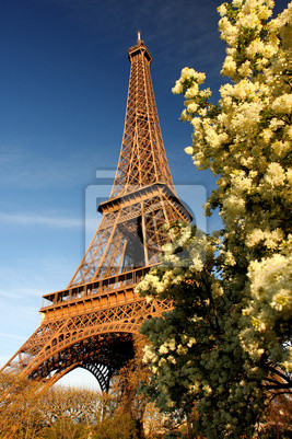Eiffelturm mit blühenden Baum in Paris, Frankreich