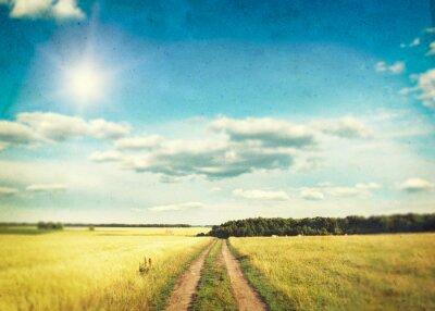 Poster Ein Feld von goldenen Weizen und blauen Himmel