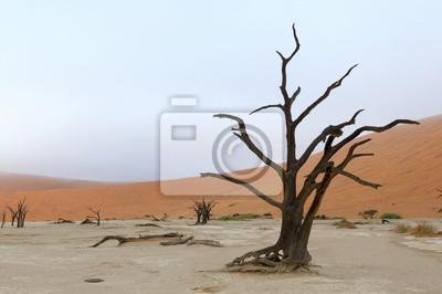 Einsamer Baum Skelett Deadvlei, Namibia