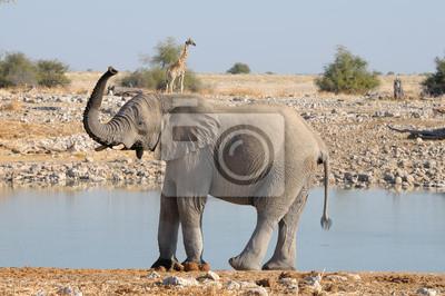Elefant und Giraffe lustigen Pose