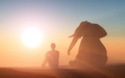 Elefant und Mensch