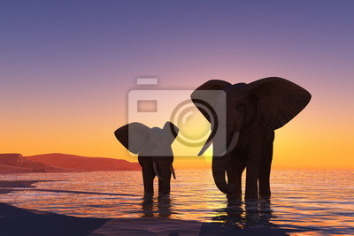 Elefanten am Strand.