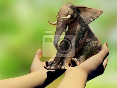 Elefanten auf den Händen.