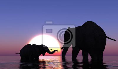 Elefanten im Meer.