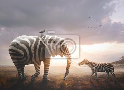 Poster Elephant with zebra stripes